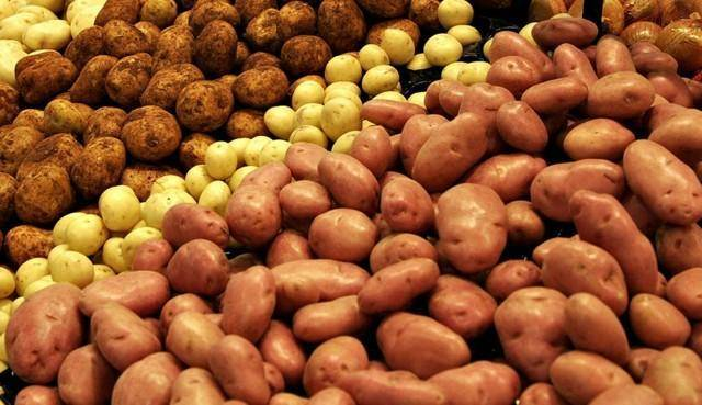 Картофельные очистки как лучшее удобрение для смородины