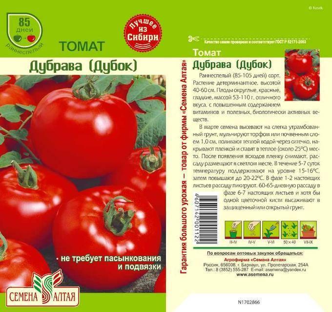 Фаворит огородников: урожайный томат дубрава