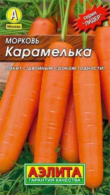 Морковь алтайская лакомка: отзывы, фото, урожайность