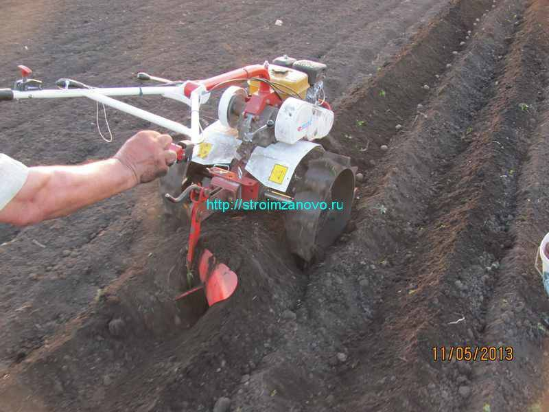 Посадка картофеля мотоблоком с окучником видео
