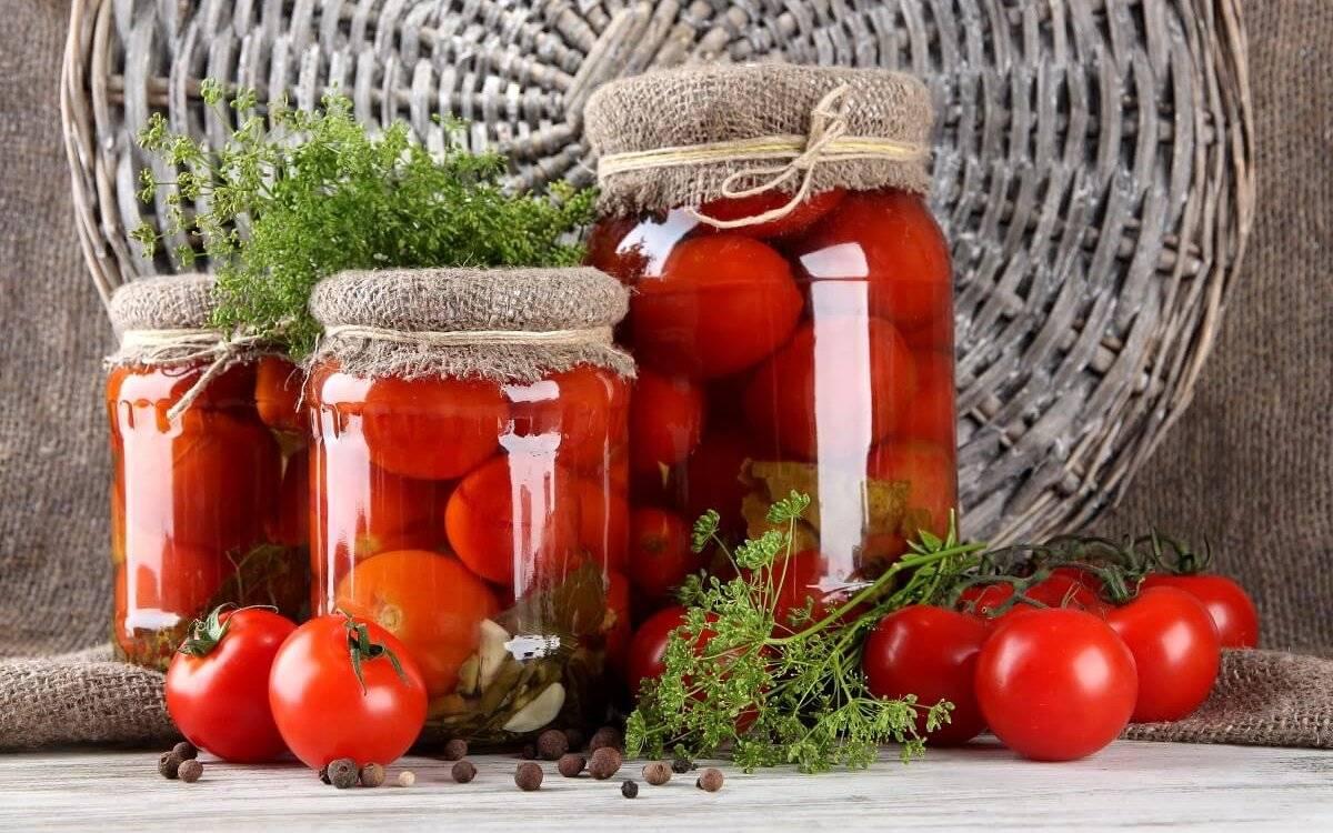 Сорта помидор для засолки и консервирования - подробный обзор!