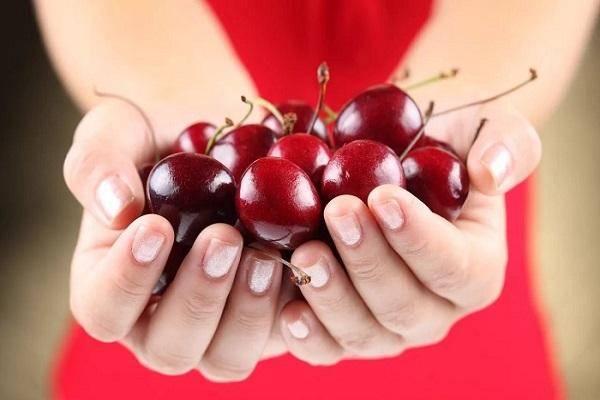 Полезные свойства и противопоказания черешни для здоровья организма человека