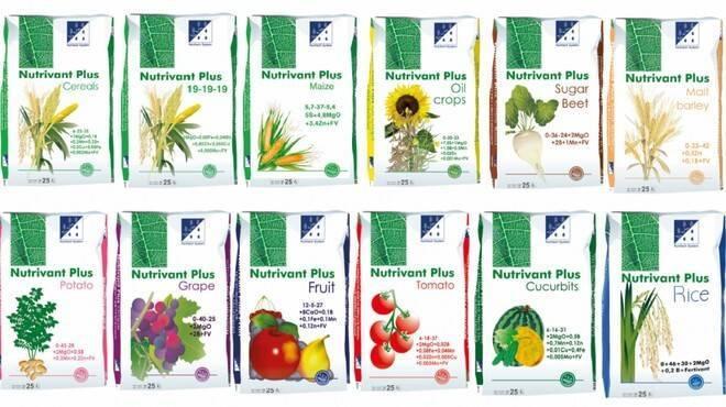 Цитовит: инструкция по применению для растений и цветов, отзывы