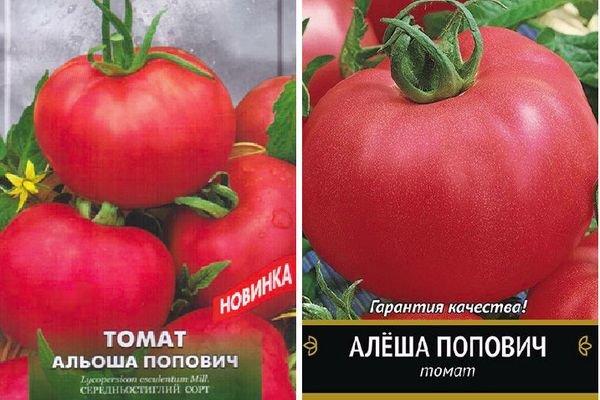 Сорт томата алеша попович