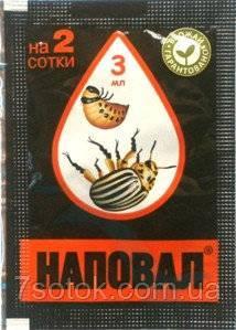 Колорадский жук: как бороться, средства, обработка народными средствами