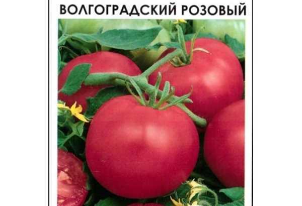 Лучшие сорта семян томатов для открытого грунта ростовской области