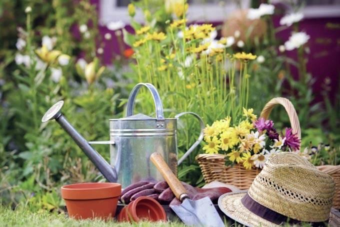 Препарат «танос» — инструкция по применению фунгицида в сельском хозяйстве