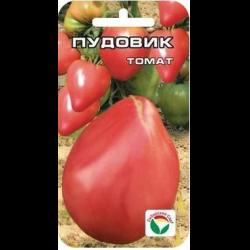 Идеальный для открытого грунта томат «севрюга»: характеристика и описание сорта, фото