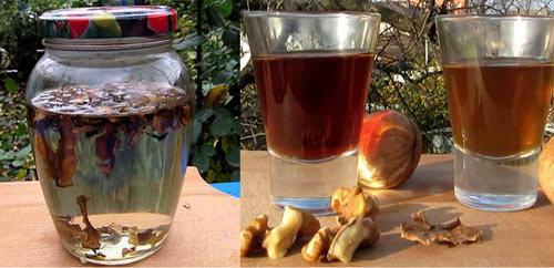 Перегородки грецких орехов: лечебные свойства и противопоказания, применение для лечения болезней, рецепты