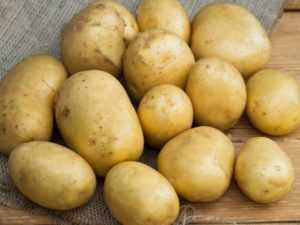 Сорт картофеля «серпанок»: характеристика, описание, урожайность, отзывы и фото
