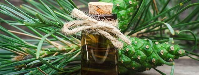 Уникальный рецепт из мумие, пихтового масла и меда