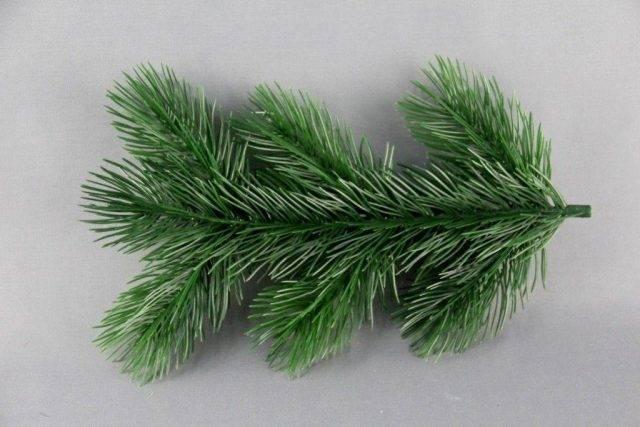 Ели (68 фото): корневая система и ветки дерева. описание, высота и отношение к почве и свету. выбор для участка и уход