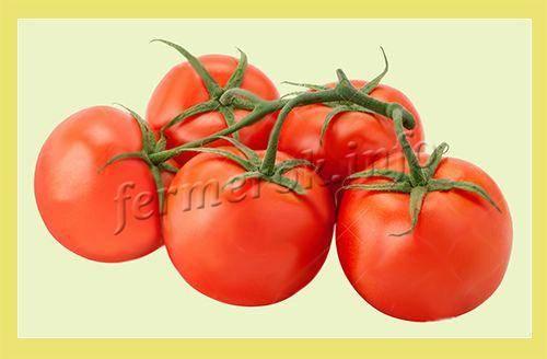 Помидоры черри: выращивание, сорта черри, полезные свойства.