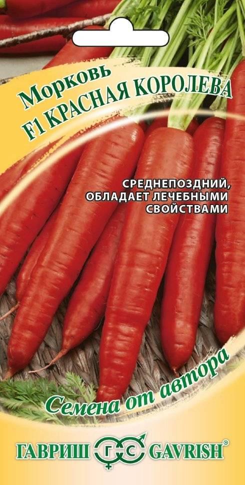 14 лучших сортов моркови для зимнего хранения