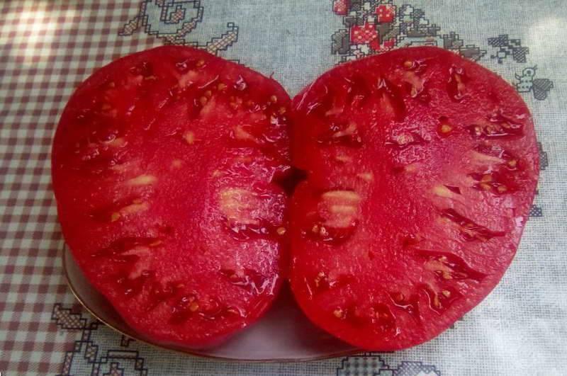 Сорт томатов бабушкин секрет: описание сорта и фото, характеристика
