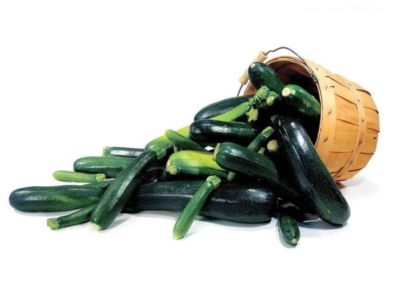 Описание и характеристика кабачков сорта черный красавец