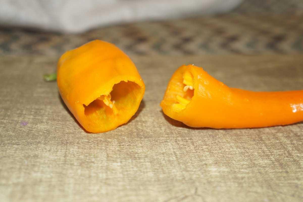 """Перец """"рамиро"""": особенности выращивания рассады, фото, болезни и вредители"""