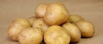 Сорт картофеля ажур: характеристика и описание сорта, фото, отзывы