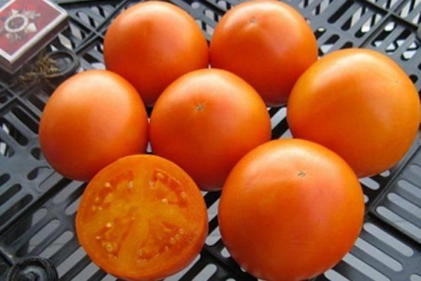 Сортовая характеристика томата апельсин