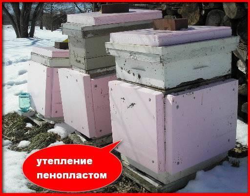 Способы обеспечения вентиляции в улье в зимний период