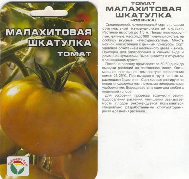 Выращивание томата малахитовая шкатулка