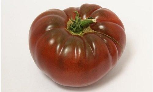 Томат «черный мавр»: описание полудетерминантного сорта и особенности его выращивания
