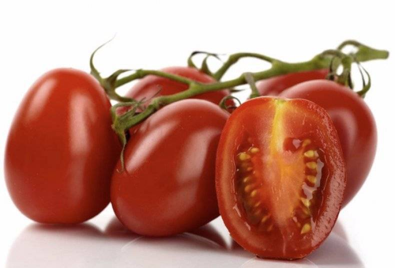 Идеальный сорт для начинающих огородников — томат «рома» f1. описание, характеристика и фото помидор «рома» vf