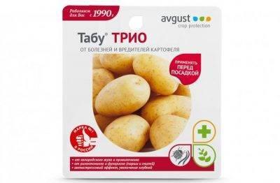 Проращивание картофеля перед посадкой — залог урожая