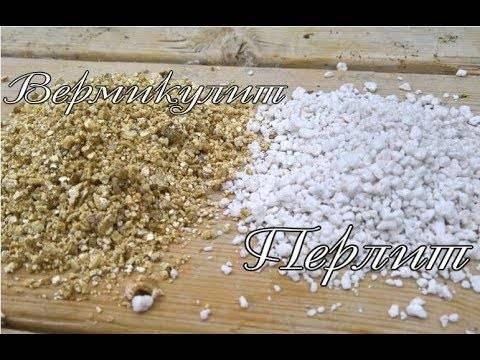 Перлит и вермикулит: в чем разница?