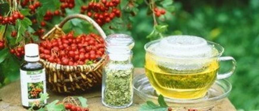 9 полезных свойств боярышника для сердца и сосудов + 5 лечебных рецептов