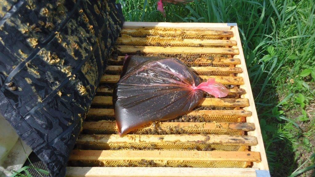 Правильная подкормка пчел зимой