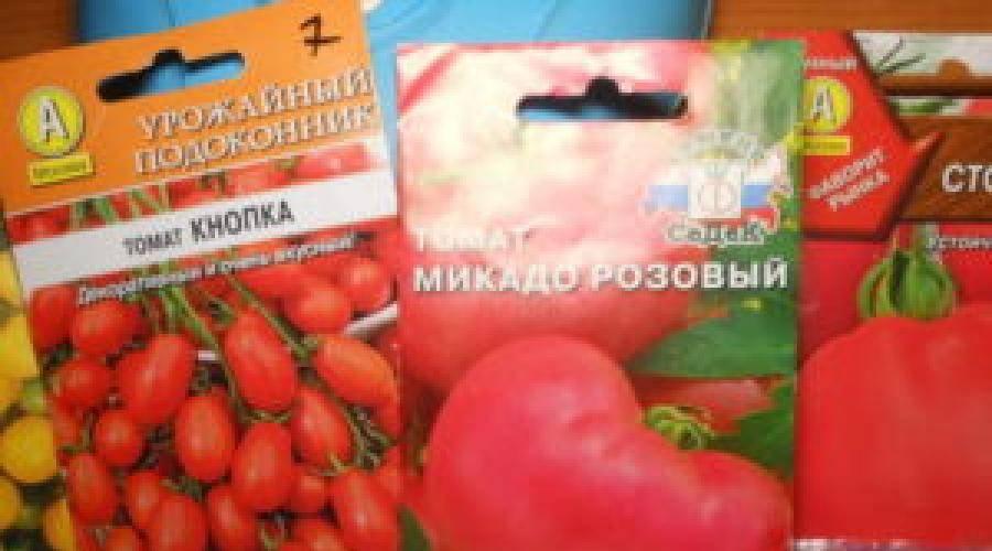 Когда сажать баклажаны на рассаду на Урале