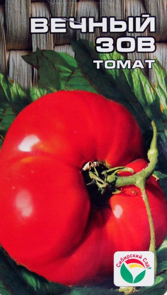 Характеристика и описание сорта томата вечный зов