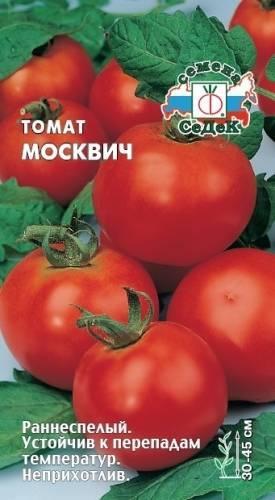 Томат Москвич: отзывы, фото