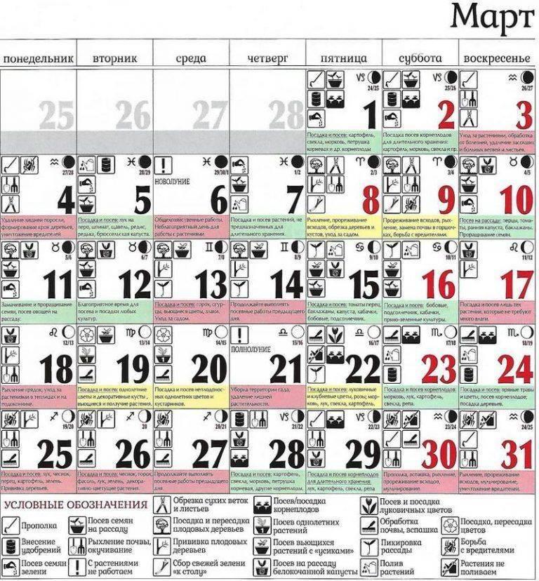 Лунный календарь на март 2020 года для цветовода