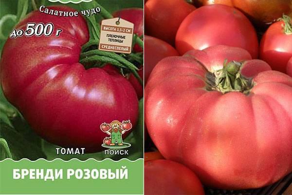 Томат малиновая империя: характеристика и описание сорта, фото, отзывы, урожайность, видео