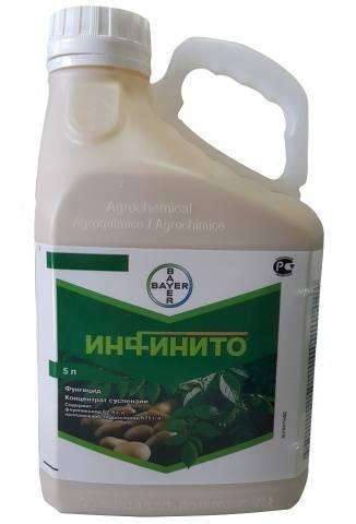 Калипсо – эффективный яд от колорадского жука