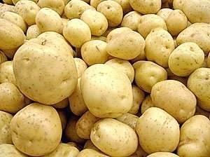 Описание сорта картофеля раджа —преимущества культуры