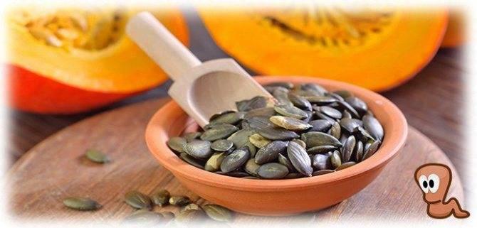 Можно ли похудеть на калорийном продукте: диета на семечках