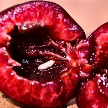 Опасны ли черви в черешне, и как от них избавиться?