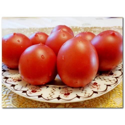 Томат сызранская пипочка (25шт) семена купить в самаре по цене 50 руб.