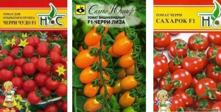 Урожайные и низкорослые сорта томатов для открытого грунта без пасынкования: какие лучше?