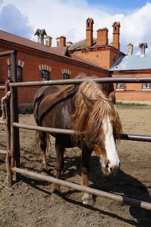 Владимирский тяжеловоз — википедия переиздание // wiki 2
