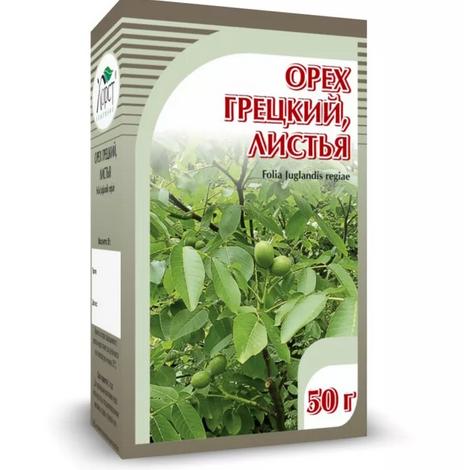 Растение лещина и его применение в медицине