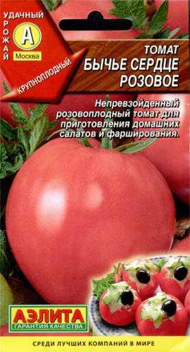 Томат «бычье сердце»: описание сорта, фото и основные характеристики помидоры