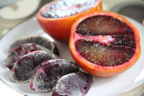 Виды гранатов: описание сортов этого красного фрукта, садовые и комнатные варианты, все основные различия между ними