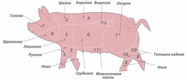 Свиная корейка, карбонат (карбонад): это какая часть туши