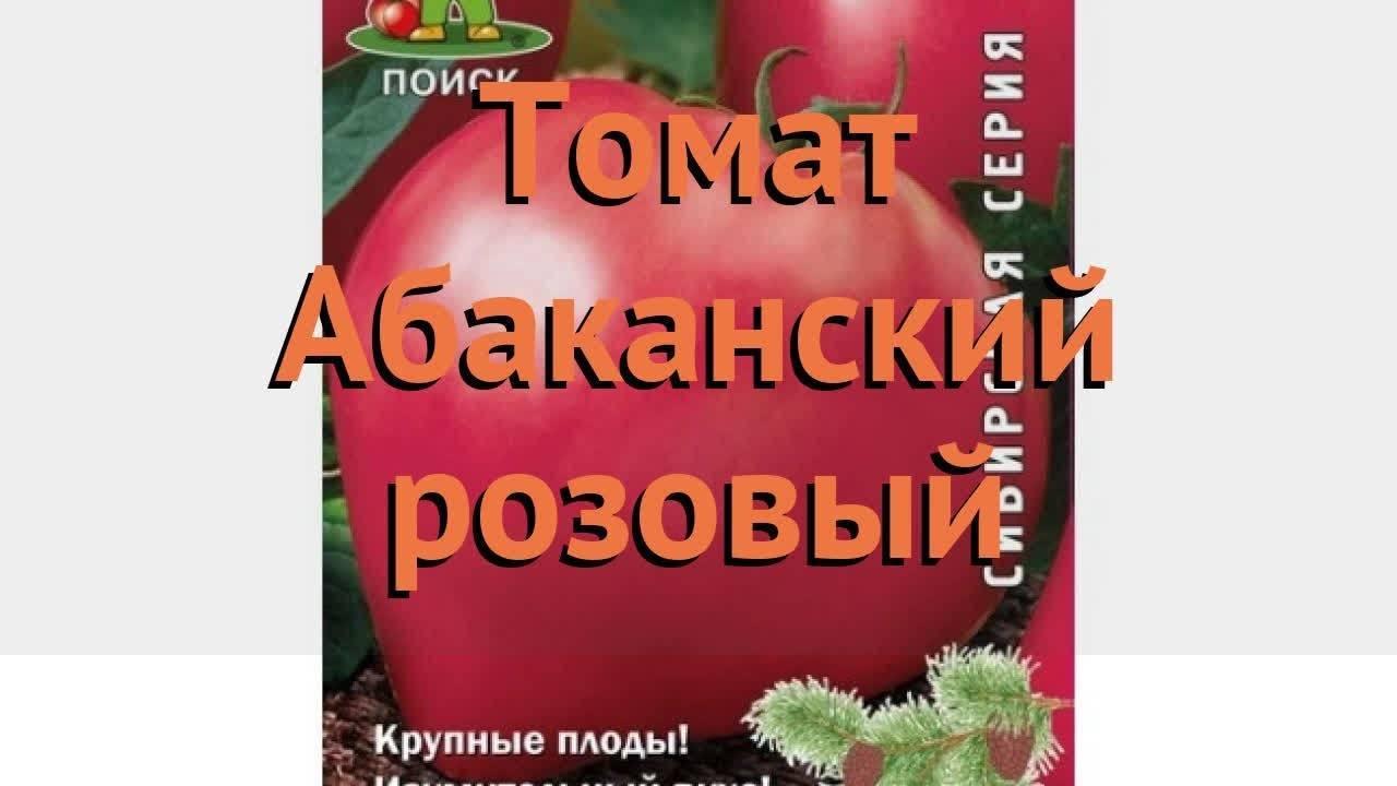 Томат абаканский розовый