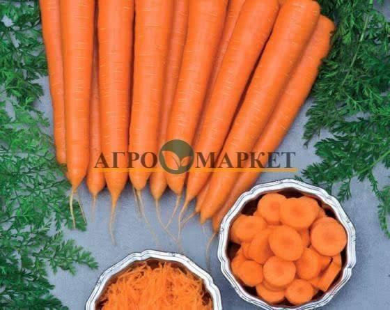 Морковь нантик резистафлай — описание сорта, фото, отзывы, посадка и уход