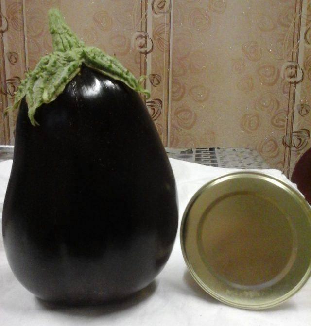 Баклажан каратай f1 — отзывы, описание сорта и характеристика